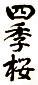 栃木の地酒「四季桜」